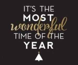 christmas, wonderful, and winter image