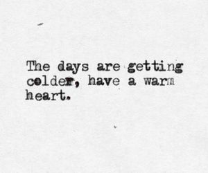 quotes, heart, and warm image