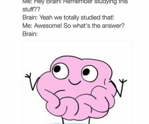 funny, brain, and lol image