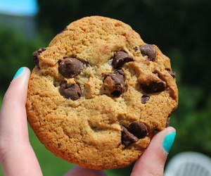 cookie, food, and nails image