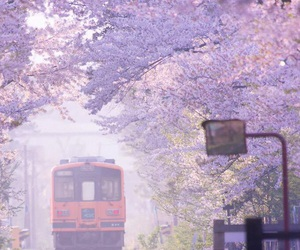 japan, train, and travel image