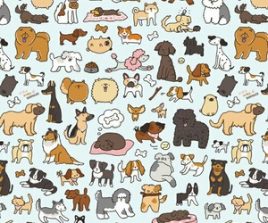 dog, background, and pattern image