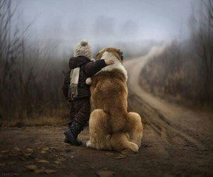 dog, boy, and friends image