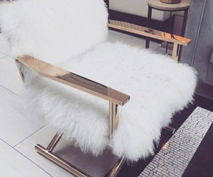 chair, fur, and rich image