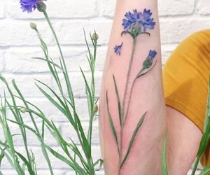 botanical, girl, and girly image