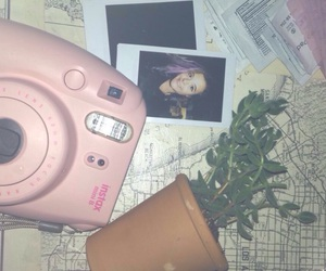 plants, poloroids, and instax mini image