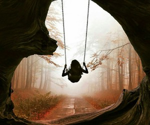 forest, nature, and swing image