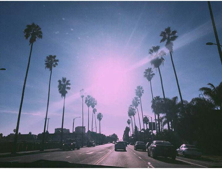 blue, los angeles, and nature image