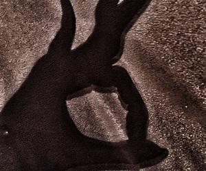 bambi, dark, and deer image