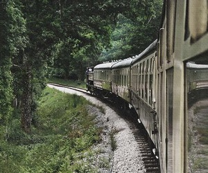 train and forest image