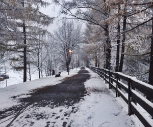 background, snow, and winter image