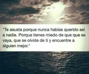 frases, love, and miedo image