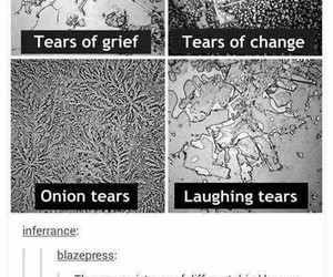 tears, change, and grief image