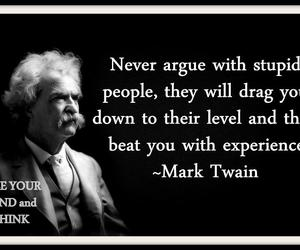 quote, mark twain, and stupid image