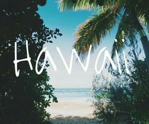 hawaii, holiday, and wallpaper+ image