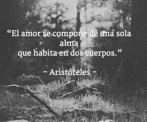 amor, frases, and almas image