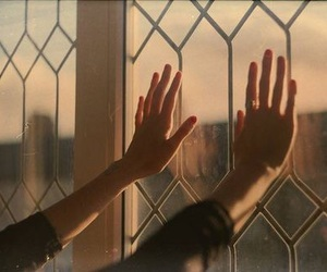 hands, aesthetic, and window image
