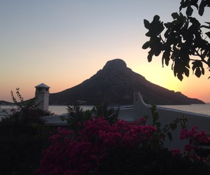 flowers, kalymnos, and Greece image