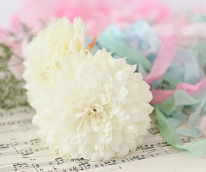 flower, girly, and pastels image