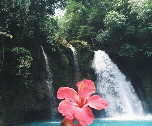asia, jungle, and waterfalls image