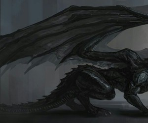dragon and black image