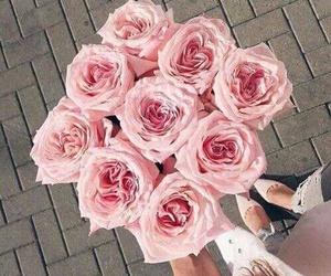 flowers, rose, and ًورد image