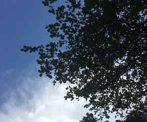 blue sky, clouds, and cloudy image
