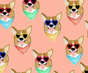 dog, wallpaper, and corgi image
