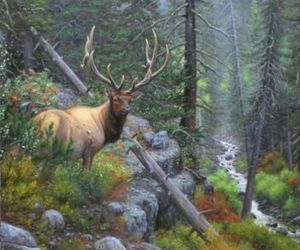 animal, deer, and mountains. mist image