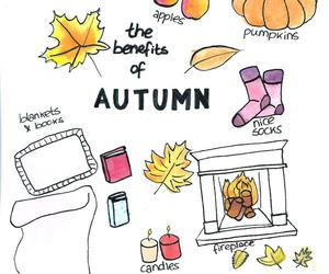 autumn, benefit, and cosy image