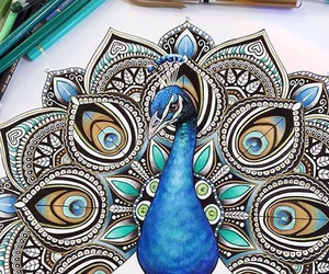 art, drawing, and peacock image