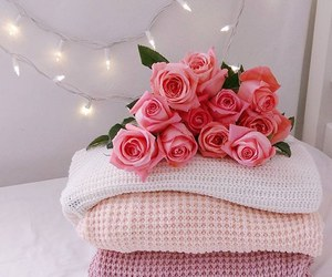 lights, pretty, and rose image