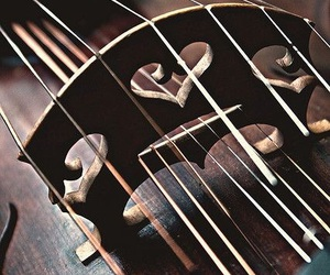 heart, music, and violin image