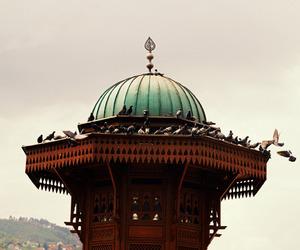 culture, peace, and islam image