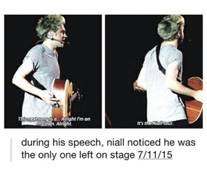 concert, funny, and niall image