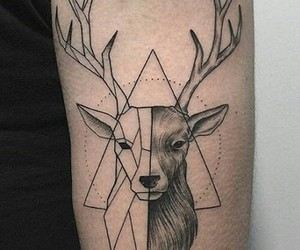 aesthetic, deer, and pretty image