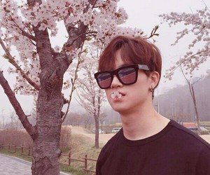 aesthetic, got7, and cherry blossoms image