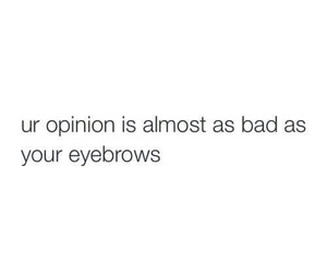 eyebrows, opinion, and quote image