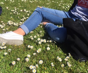 flowers, green, and aesthetic image