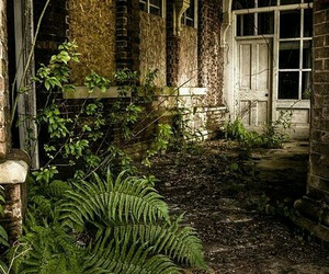 abandoned, old, and beautiful image
