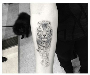 animal, black and white, and tattoo image