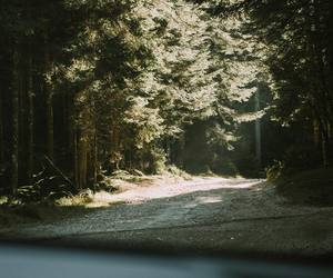 adventure, explore, and travel image