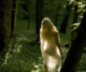 forest, blonde, and tree image