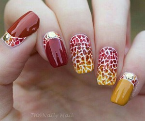 art, fall, and nails art image