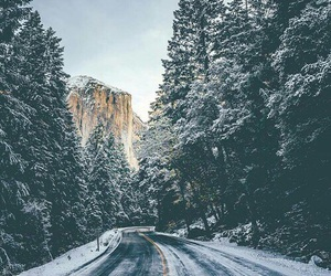 road, winter, and nature image