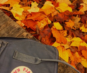 backpack, cold days, and fall image