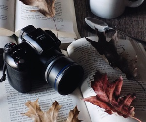 autumn and pic image