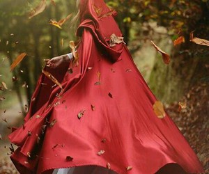red, forest, and fairytale image
