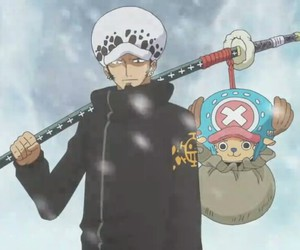 chopper, Law, and one piece image