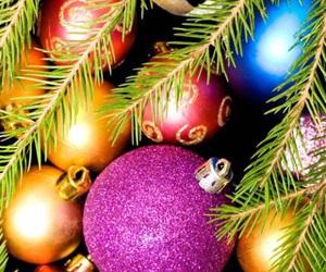 beauty, christmas tree, and decor image